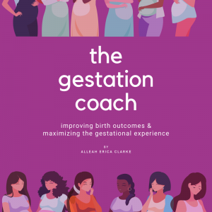 The Gestation Coach EBook